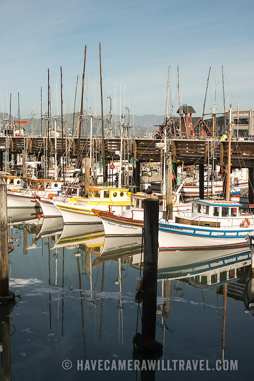 Wooden fishing boats at their moorings in Fisherman's Grotto, next to Fisherman's Wharf, in San Francisco, California.