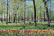 Niepołomice, 19.04.2016, (woj. małopolskie). Park miejski.