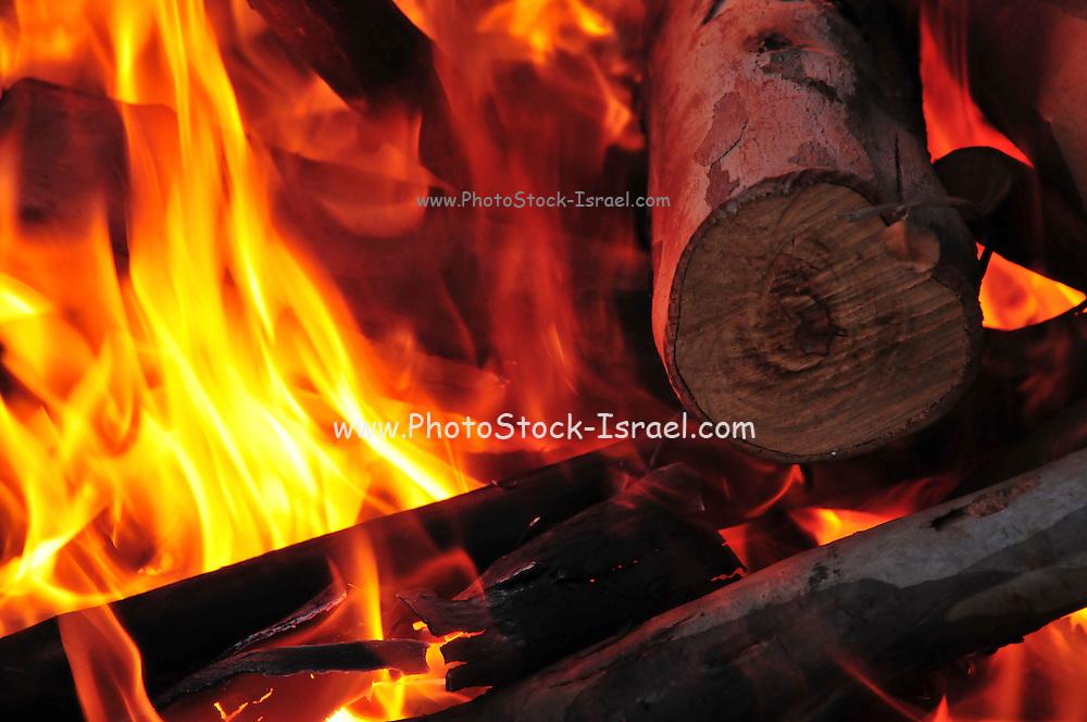 Outdoor cooking burning logs