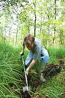 Conservation volunteers blocking a ditch to help re-wet a woodland bog. The high water table is necessary to maintain this vulnerable habitat.