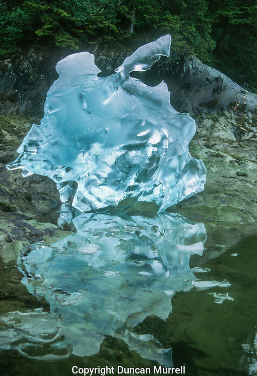 Blue icebergs develop from older, deep glaciers which have undergone tremendous pressure experienced for hundreds of years. The process releases and eliminates air that was originally caught in the ice by falling snow. Therefore, icebergs that have been formed from older glaciers have little internal air or reflective surfaces. When long wavelength light (i.e. red) from the sun hits the iceberg, it is absorbed, rather than reflected. The light transmitted or refracted through the ice returns as blue or blue-green. Older glaciers also reflect incident light preferentially at the short wavelength end of the spectrum (i.e. blue) due to Rayleigh scattering, much in the same way that makes the sky blue.