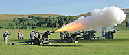 Department of Defense -- A Salute Battery fires off a round during the First Infantry Division Review at Fort Riley, Kansas.