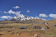 Mount Ausangate in the Cordillera Vilcanota mountain range in the Andes of Peru.
