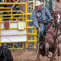 070513       Cable Hoover<br /> <br /> Johnny Salvo slides off his horse as his rope tightens on the calf in tie down roping during the PRCA rodeo in Window Rock Friday.