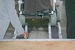 Disabled access wheelchair rails