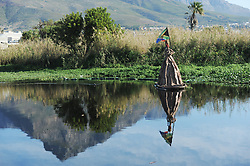 """South Africa - Cape Town - 20 May 2020 - Pollution levels in the Swart Rivier """"Black River"""" has risen since the start of lockdown. Photographer: Armand Hough/African News Agency(ANA)"""