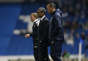 Brighton manager Chris Hughton amd Brighton assistant manager Colin Calderwood during the Sky Bet Championship match between Brighton and Hove Albion and Bournemouth at the American Express Community Stadium, Brighton and Hove, England on 10 April 2015.