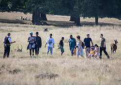 "© Licensed to London News Pictures. 20/09/2020. London, UK. Police speak to a group of people as they patrol Richmond Park in South West London on the first weekend of the ""Rule of Six"" as members of the public enjoy a picnic and walk in the fine weather. Gatherings of over six people have been banned by the Government after a spike in coronavirus cases. Health Minister Matt Hancock has announced that people with coronavirus who don't self-isolate could be fined up to £10,000 and Prime Minister Boris Johnson has said that the UK was heading for a second wave.  Photo credit: Alex Lentati/LNP"