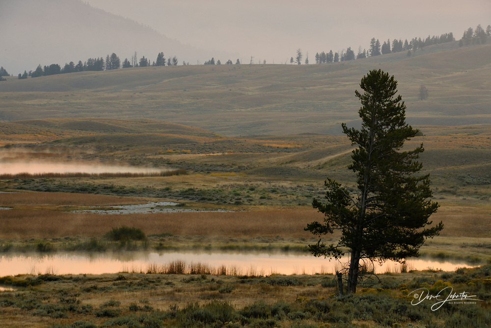 Blacktail Lakes with morning mists, Yellowstone NP, Wyoming, USA