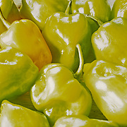 Close -Up of Habanero peppers. Mexico.
