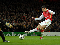 Photo: Ed Godden.<br /> Arsenal v Hamburg. UEFA Champions League, Group G. 21/11/2006. Robin Van Persie scores for Arsenal to make it 1-1.