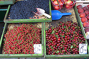 Cherries, blueberries and other fruit for sale at small outdoor market in Krakow, Poland. (Supporting image from the project Hungry Planet: What the World Eats.)