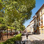 Historic buildings and restaurants, Paseo del Padre Manjob, Albaicin, Granada, Spain