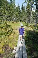 Hiking across Löckenmoos, an area of high moorland, to Löckersee. Salzkammergut, Austria © Rudolf Abraham