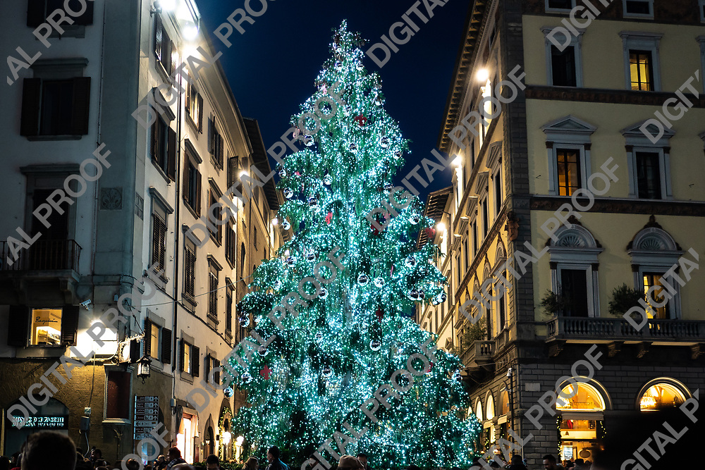 Firenze, Tuscany Italy - December 30, 2018 Florence Christmas Tree Lights at night, horizontal crop