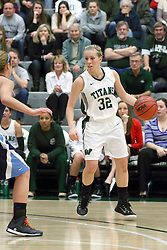 21 February 2015:  Samantha Ellsworth during an NCAA women's division 3 CCIW basketball game between the Elmhurst Bluejays and the Illinois Wesleyan Titans in Shirk Center, Bloomington IL