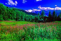 Swiss Alps in summer, Above Verbier, Switzerland