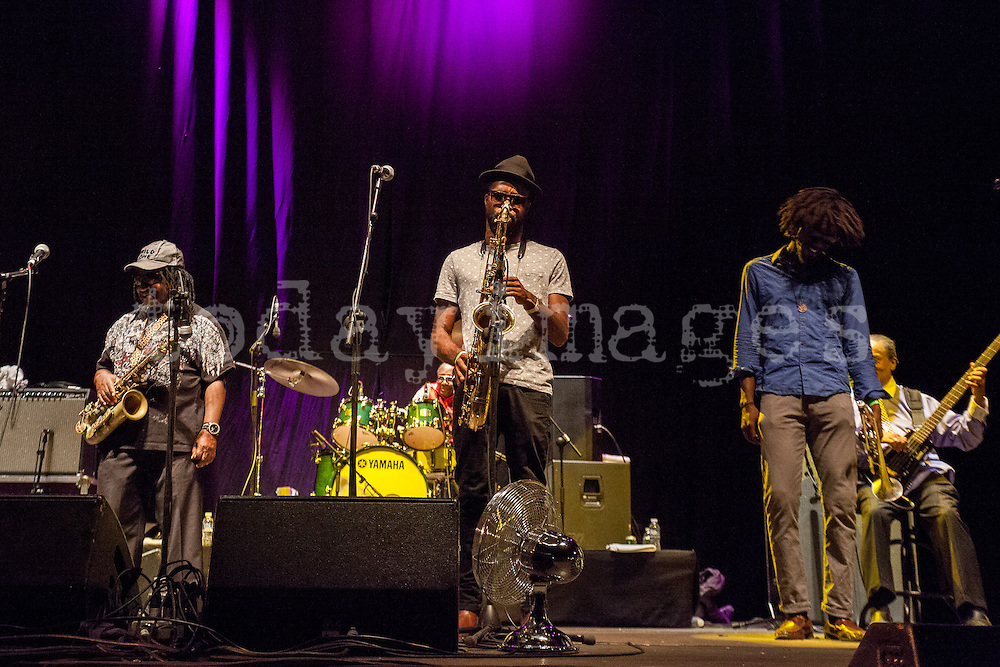 Skatalites performs during the Madgarden Festival Concert at the Royal Botanical Garden in Madrid 2014.<br />  The festival Madgarden is being celebrated from 26 June to 27 July in the Royal Botanical Garden Alfonso XIII of the Complutense University of Madrid, a bicentennial space