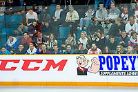 KAMLOOPS, CANADA - NOVEMBER 5: Team Russia fans cheer in the stands against the Team WHL  on November 5, 2018 at Sandman Centre in Kamloops, British Columbia, Canada.  (Photo by Marissa Baecker/Shoot the Breeze)