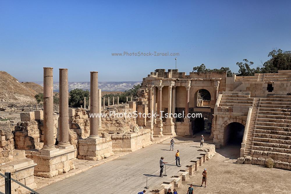 Israel, Bet Shean (Scythopolis) ancient columns found on the site,