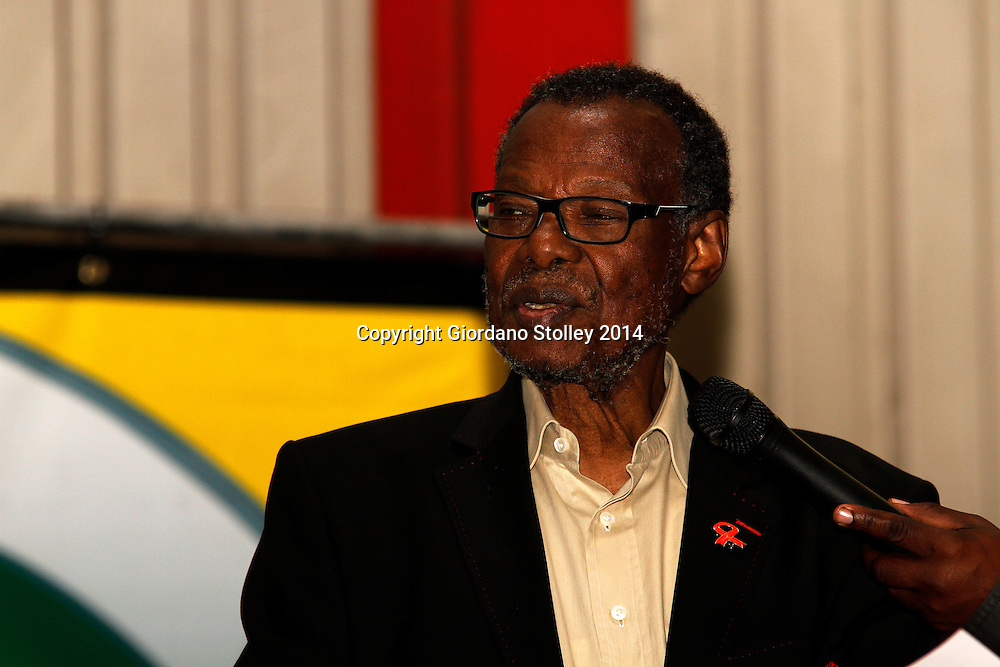 DURBAN - 5 May 2014 - Mangosuthu Buthelezi, the leader of the Inkatha Freedom Party, speaks at a rally in Durban's Umlazi township ahead of the country's May 7 general election.  The IFP is trying to counter the effects of a breakawy faction that is expected to half its portion of the vote it obtained in the previous election in 2009. Picture: Allied Picture Press/APP