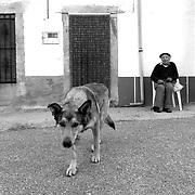 Sayago, Zamora, Spain
