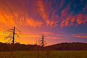 Sunset near eastern boundary of park , Algonquin Provincial Park, Ontario, Canada