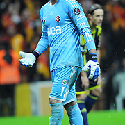 Fenerbahce's goalkeeper Volkan Demirel during their Turkish superleague soccer derby match Galatasaray between Fenerbahce at the TT Arena in Istanbul Turkey on Friday, 18 March 2011. Photo by TURKPIX