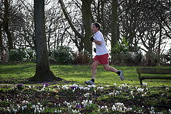 © Licensed to London News Pictures . 27/02/2014 . Buile Hill Park , Salford , UK .  A jogger runs through the park . Glorious spring sunshine in Buile Hill Park this afternoon (Thursday 27th February 2014) as weather is predicted to take a colder turn . Photo credit : Joel Goodman/LNP