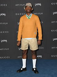 November 2, 2019, Los Angeles, California, USA: 02 November 2019 - Los Angeles, California - Tyler the Creator. 2019 LACMA Art + Film Gala Presented By Gucci held at LACMA. (Credit Image: © Birdie Thompson/AdMedia via ZUMA Wire)