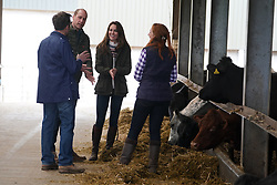 The Duke and Duchess of Cambridge (centre) are shown cattle by farmers Stewart Chapman and his wife Clare Wise, during their visit to Manor Farm in Little Stainton, Durham. Picture date: Tuesday April 27, 2021.