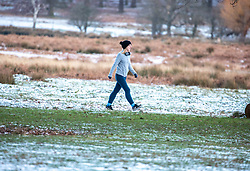 © Licensed to London News Pictures. 10/02/2021. London, UK. Londoners enjoy a walk in a frosty Richmond Park, South West London this morning as the Met Office issue weather warnings for extreme cold with temperatures forecast to drop to as low as -10c in London tonight as Storm Darcy continues to bring travel chaos to the South East and the rest of the UK.  Photo credit: Alex Lentati/LNP