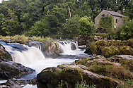 Cenarth Falls on the Afon Teifi, Pembrokeshire, Wales, Uk