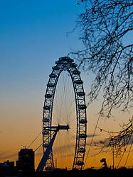 London Eye at Sunset
