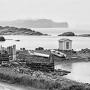 Newfoundland website images