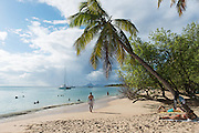 Plage de Sainte Anne, Sainte Anne Beach, Le Marin, Martinique, France