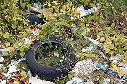 Litter dumped in the grass,