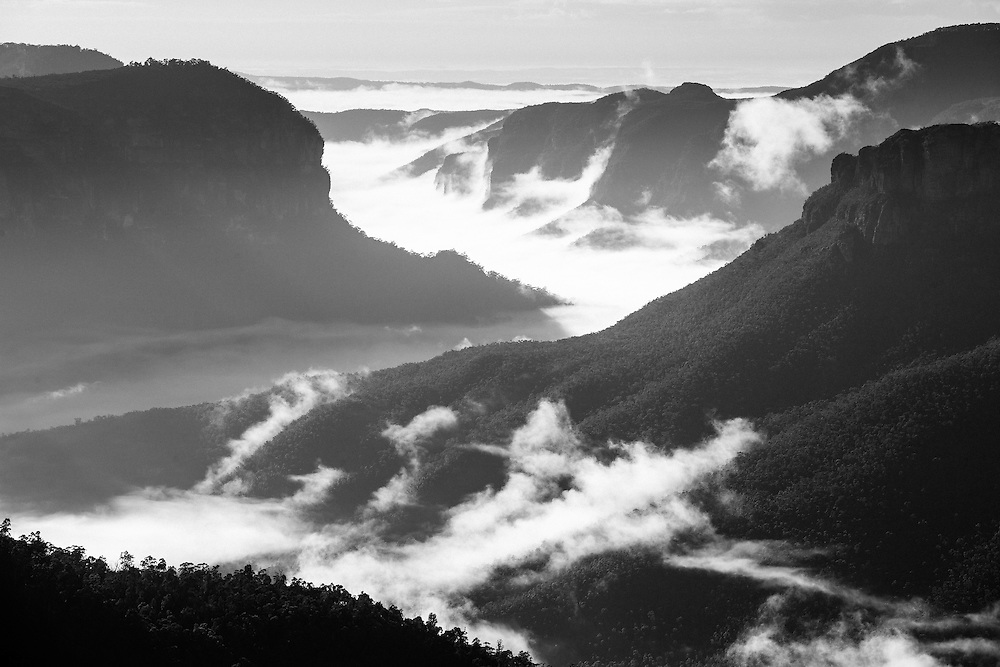 Morning fog rolls though the Grose Valley on a sunny winter morning after overnight rain. Blue Mountains National Park.
