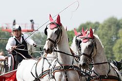 Zoltan Lazar, (HUN), Bibor, Favory Cudar, Maestoso x9, Siglavy Szello, Vigour - Driving Marathon - Alltech FEI World Equestrian Games™ 2014 - Normandy, France.<br /> © Hippo Foto Team - Becky Stroud<br /> 06/09/2014