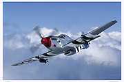 "P-51D ""Donald Duck"", aerial"