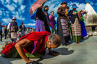 A Tibetan Buddhist monk prostrating himself repeatedly as he circumambulates through Barkhor Square and along The Barkhor (around the area of the Jokhang Temple), the most sacred temple in Tibet, Lhasa, Tibet, China.