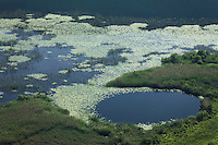 A glimpse of Kuti Lake with a sinkhole. Delta of the Neretva river (trans-boundary area Croatia/Bosnia-Herzegovina), Dalmatia region, Croatia.  May 2009.<br /> Elio della Ferrera / Wild Wonders of Europe