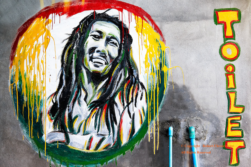 Bobs' Toilet: A colourful painting of Bob Marley decorates a toilet, on Don Det Laos.