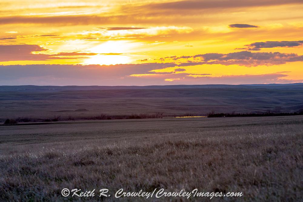 Sunset on the short-grass prairie.