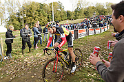 Friday 1 November 2013: Laurens Sweeck descends for the final time in the Koppenbergcross 2013 Beloften race. Copyright 2013 Peter Horrell