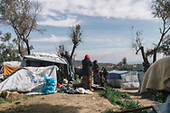 Female asylum seekers living in the makeshift settlement next to the official Moria refugee camp site. Scattered amongst the olive groves, around 1500 people live in tents and shelters in this unofficial site.