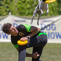 Enrico Collini of Italy competes with his dog Jack during the Flydogs Extreme Distance Frisbee European Championships held in  Budapest, Hungary. Saturday, 16. June 2012. ATTILA VOLGYI