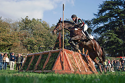 Larsson Malin - Walter von der Vogelweide<br /> World Championship Young Eventing Horses<br /> Le Lion d'Angers 2008<br /> Photo © Hippo Foto