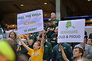 April 4, 2016; Indianapolis, Ind.; Seawolf fans cheer on the team in the NCAA Division II Women's Basketball National Championship game at Bankers Life Fieldhouse between UAA and Lubbock Christian. The Seawolves lost to the Lady Chaps 78-73.