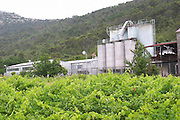 Outside wine fermentation tanks at a winery. Vineyard in the foreground. Potomje village, Dingac wine region, Peljesac peninsula. Dingac village and region. Peljesac peninsula. Dalmatian Coast, Croatia, Europe.